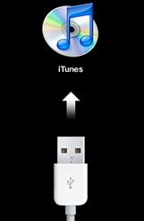 Connexion à iTunes